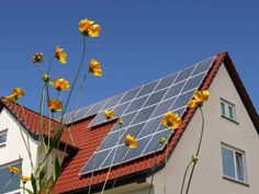 HGTV.com shows you how to factor in financial incentives and long-term savings to determine the real cost of investing in solar power.