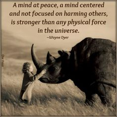 A Mind at Peace