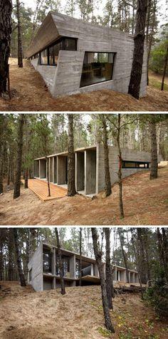 Дом в лесу: 18 вдохновляющих примеров
