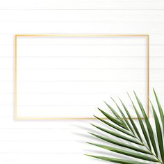 Rectangle golden nature frame on a white wooden board Tropical Background, Vector Can, Background Design Vector, Lots Of Money, Flower Frame, Free Illustrations, Botany, Iphone Wallpaper, Cool Designs