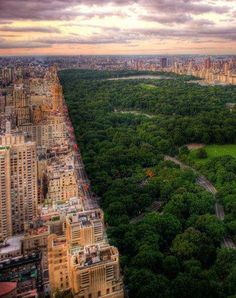 Central Park, NYC. This looks so amazing. In the middle of a concrete jungle