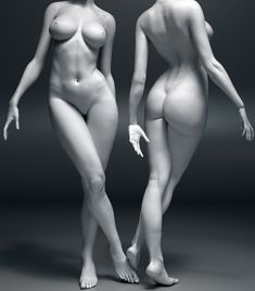 http://brunohakk.wordpress.com/r reference, anatomy #anatomy #female