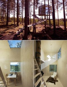 17 Tree Houses For Adults Treehouse Living, Building A Treehouse, Woodland House, Forest House, Modern Tree House, Modern Cottage, House Worth, Build Your Own Shed, Cool Tree Houses