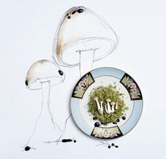mushrooms photographed by Andrea Bricco and styled by Casa de Perrin from Rue