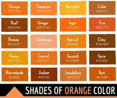 Orange Color Code, Orange Color Shades, Orange Paint Colors, Orange Color Palettes, Color Schemes Colour Palettes, Colour Pallette, Gray Color, Orange Rooms, Orange Walls