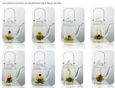 fleurs de thé - Recherche Google