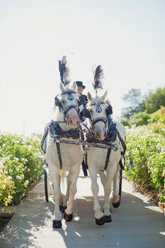 california-wedding-11-021316ac