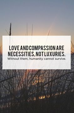 Love and compassion are necessities, not luxuries. Without them, humanity cannot survive.    #stress #stressed #anxiety #rela #relaxed #meditate #meditation #sleep #sleepproblem #calm #calmmind #healthybody #healthymind #serenity #immunesystem #healthyimmunesystem #energy #energize #boostenergy #herbs  #TheStressCompany #NaturalStressInfo #inspirationalquotes