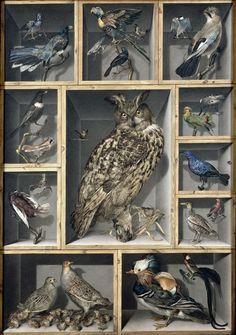 Alexandre Isidore Leroy de Barde (1777-1828) —   Birds : Musée du Louvre, Paris. France (900×1281)