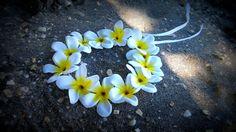New to dieselboutique on Etsy: Plumeria Headband white Flower Festival hawaiian lei Luau coachella hippie  tropical hula haku tiki party pool wedding edm (22.99 USD)