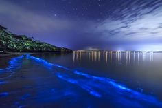 15 of the Most Incredible Natural Swimming Pools in the World via Bioluminescent Bay, Vieques, Puerto Rico Bioluminescent Bay Puerto Rico, Bioluminescent Plankton, Maldives, Destinations, Natural Swimming Pools, Paris Match, Beautiful Forest, Destination Voyage, Natural Wonders