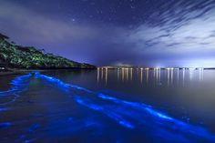 Luminescent Mosquito Bay - Puerto Rico: Isla de Viequez