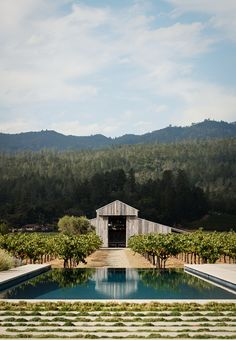 Image 6 of 34 from gallery of Zinfandel / Field Architecture. Photograph by Joe Fletcher Landscape Plans, Landscape Architecture, Landscape Design, Architecture Design, Landscape Borders, Country Pool, Interior Minimalista, Landscaping Supplies, Country Estate