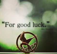 Mocking Jay Pin. It's official. I want one!