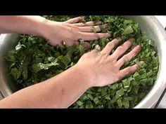 ЩАВЕЛЬ на зиму: просто добавь воды! - YouTube Yams, Kraut, Preserves, Celery, Pickles, Asparagus, Food And Drink, Cooking Recipes, Herbs