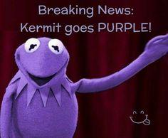 Kermit goes Purple Purple Love, All Things Purple, Shades Of Purple, Deep Purple, Purple And Black, Pink Purple, Lilac, Purple Stuff, Lavender
