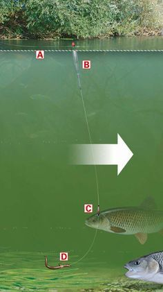 How to use a chubber float for fishing shallow and fast rivers or streams . More fishing pictures @ http://www.marketresearchstore.net/