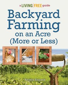 Backyard Farming on an Acre | 23 Best Homesteading Websites and Blogs