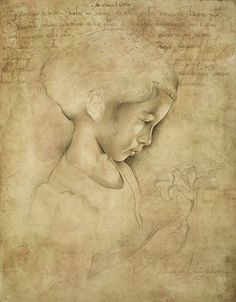Maria Teresa Meloni Drawings