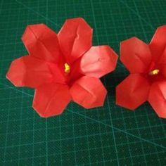 折纸小花视频教程
