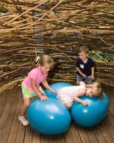 Morris Arboretum's Tree Adventure exhibit, Out on a Limb.  A 450-foot long walkway that soars 50 feet above the ground, and gives visitors a bird's eye view of the forest. Cross a Suspension Bridge to a giant Bird's Nest and sit on huge robin's eggs, scamper onto the Squirrel Scramble's rope-netting skirting two towering trees, head to the top of the Wissahickon Vista platform for sweeping views, or just wander along the Canopy Walk rising high above the forest floor.