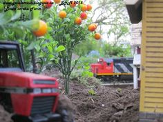 Www.gscaletrain.blogspot.ca #Gscale #Garden #Train #Farm #Tractor
