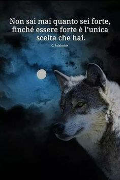 "Vaizdo rezultatas pagal užklausą ""wolf in your dreams"" Wise Quotes, Inspirational Quotes, Uplifting Quotes, Deep Sentences, Le Pedi A Dios, Cogito Ergo Sum, Italian Quotes, She Wolf, Some Words"