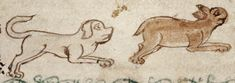 Medieval Bestiary : Dog Gallery Medieval Manuscript, Medieval Art, Illuminated Manuscript, Old Best Friends, Middle Ages, Hare, Beast, Moose Art, Bunny