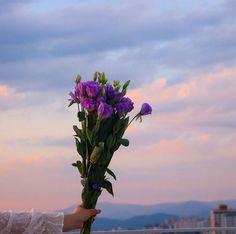 은은한 향기와 신비로운 보랏빛 비주얼로 여친 마음 제대로 훔치는 '리시안셔스 꽃다발' Nature Aesthetic, Aesthetic Images, Flower Aesthetic, Purple Aesthetic, Summer Aesthetic, Aesthetic Wallpapers, Wild Flowers, Beautiful Flowers, Pretty Pictures