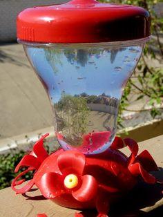 DIY Hummingbird Nectar
