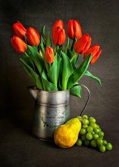 Красные тюльпаны, лимон, виноград Exotic Flowers, Love Flowers, Beautiful Flowers, Flower Images, Flower Art, Still Life Images, Painting Still Life, Photography Gallery, Color Of Life
