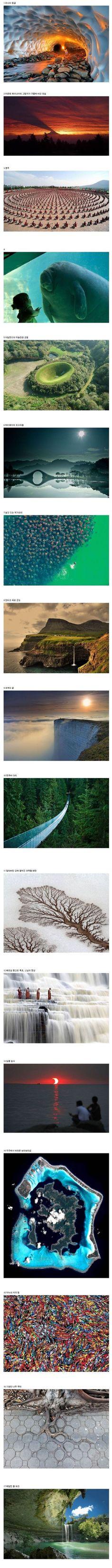 클리앙 > 모두의공원 > 상반기에 뽑힌 올해의 사진.JPG