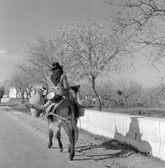 "Série ""Paisagens Habitadas"". Algarve, décadas de 50/60. Algarve, Old Pictures, Old Photos, Vintage Photos, Son Birthday Quotes, Lisbon, Art Inspo, The Incredibles, Black And White"