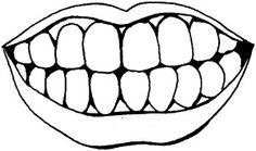 Mouth-&-Teeth