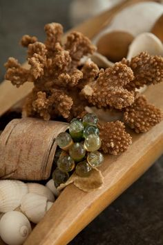 rough rusty coral against smooth antique glass grapes & birch bark  photo Heather Ross natural eclectic