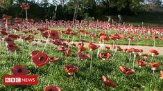 poppy display in Rutland praised by Prince Harry - BBC News Ceramic Poppies, British History, Bbc News, Prince Harry, Poppy, Castle, War, Display, Outdoor