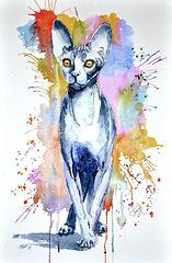 Steven Ponsford - Sphinx cat