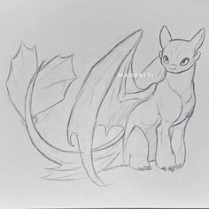 Sketch drawing of the Light Fury the White Night Fury dragon : Sketch drawing of the Light Fury the White Night Fury dragon Animal Sketches, Art Drawings Sketches, Easy Drawings, Animal Drawings, Sketch Drawing, Toothless Sketch, Dragon Artwork, Dragon Drawings, Night Fury Dragon