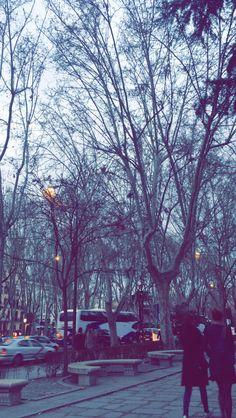 #calles #winter #trees #bäume #straßen