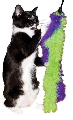 Imperial Cat Marabou Double Feather Boa Teaser Wand Cat Toy Made In USA #ImperialCat