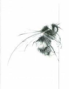 jessica albarn bees - Google Search