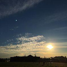 Another great sunset life goes on.. #sunset #autumn #70degrees #november #sunshine #globalwarmingisreal #pnw #upperleftusa #portland #portlandoregon #pacificnorthwest #forestheights #iphoneonly #nofilter