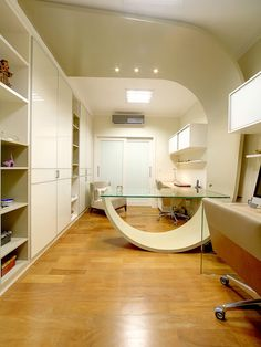 Contemporary Home Office Design, Pictures, Remodel, Decor and Ideas - page 13