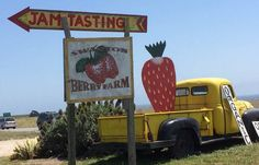 Northern California U-Pick Farms, Orchards & Tours Pick Your Own Apples, Strawberry Farm, Farm Store, Farm Logo, Fruit Stands, Small Farm, Northern California, Farmer, Homesteading