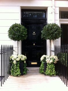 Belgravia - I love this area of London Perfect topiaries in planter boxes