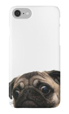 Worried Pug Phone Cases/Stickers/Other Items