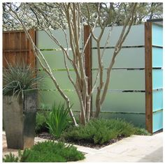 Privacy fence with frosted glass panels