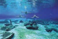 florida camping springs | Rainbow River Florida Springs, Florida Keys, Dive Rite, Dive Store, Rainbow River, Florida Camping, Cave Diving, Snorkelling, Water Sports