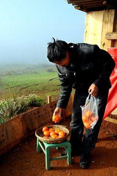 Persimmon Seller Yunnan China