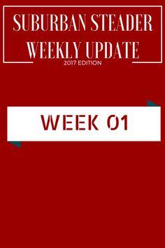 Weekly Upate - 2017